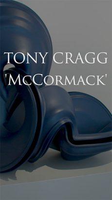 Tony Cragg - McCormack